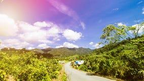Τροπικό τοπίο, τοπίο τροπικών δασών, θερινό τοπίο, όμορφο τοπίο στοκ φωτογραφία με δικαίωμα ελεύθερης χρήσης