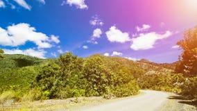 Τροπικό τοπίο, τοπίο τροπικών δασών, θερινό τοπίο, όμορφο τοπίο στοκ εικόνες με δικαίωμα ελεύθερης χρήσης