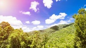 Τροπικό τοπίο, τοπίο τροπικών δασών, θερινό τοπίο, όμορφο τοπίο στοκ εικόνες