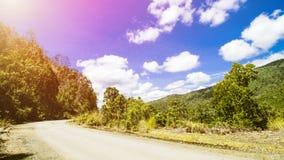Τροπικό τοπίο, τοπίο τροπικών δασών, θερινό τοπίο, όμορφο τοπίο στοκ εικόνα