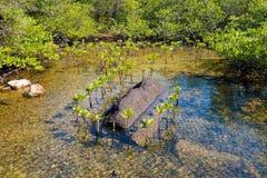 Τροπικό τοπίο Koh Kood Στοκ Φωτογραφίες