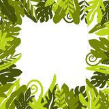 Τροπικό υπόβαθρο με τα φύλλα φοινικών Στοκ εικόνες με δικαίωμα ελεύθερης χρήσης