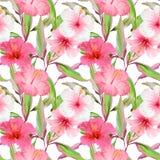 Τροπικό υπόβαθρο λουλουδιών και φύλλων πρότυπο άνευ ραφής διανυσματική απεικόνιση
