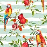 Τροπικό υπόβαθρο λουλουδιών, ροδιών και πουλιών παπαγάλων Στοκ Εικόνα