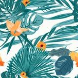 Τροπικό φτερών σχέδιο λουλουδιών πρασινάδων πορτοκαλί ελεύθερη απεικόνιση δικαιώματος