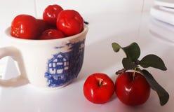 Τροπικό acerola Fruts- στοκ εικόνες