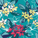 Τροπικό floral θερινό άνευ ραφής σχέδιο με τα WI λουλουδιών plumeria ελεύθερη απεικόνιση δικαιώματος