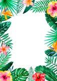 Τροπικό floral πλαίσιο συνόρων Watercolor για το γάμο, την επέτειο, τα γενέθλια, τις προσκλήσεις, τις κάρτες, τις ημερομηνίες, κ. απεικόνιση αποθεμάτων