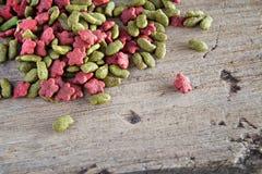 Τροφές γατών ή τροφές σκυλιών Στοκ Φωτογραφία