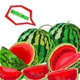 Τροφίμων καρπουζιών γλυκός οργανικός juic φετών φρούτων ώριμος διανυσματικός φρέσκος διανυσματική απεικόνιση