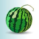 Τροφίμων καρπουζιών γλυκός οργανικός juic φετών φρούτων ώριμος διανυσματικός φρέσκος απεικόνιση αποθεμάτων