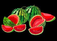 Τροφίμων καρπουζιών γλυκός οργανικός juic φετών φρούτων ώριμος διανυσματικός φρέσκος ελεύθερη απεικόνιση δικαιώματος