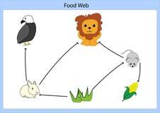 Τροφική αλυσίδα στοκ εικόνα με δικαίωμα ελεύθερης χρήσης