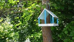 Τροφοδότης για τα πουλιά στο δέντρο Στοκ εικόνα με δικαίωμα ελεύθερης χρήσης