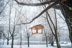 Τροφοδότης για τα πουλιά στο χειμερινό δάσος Στοκ Εικόνα