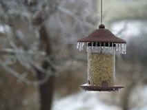 τροφοδότης πουλιών παγωμένος Στοκ εικόνα με δικαίωμα ελεύθερης χρήσης