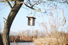 Τροφοδότης πουλιών στοκ φωτογραφία