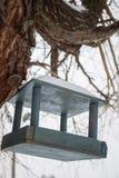 Τροφοδότης πουλιών σε ένα δέντρο στο χειμερινό χιόνι Στοκ Φωτογραφία