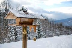 Τροφοδότης πουλιών στο χειμερινό πάρκο στοκ φωτογραφία
