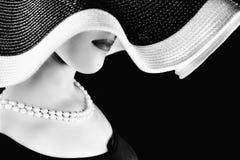 Τροχιές της Αφροδίτης στοκ εικόνες με δικαίωμα ελεύθερης χρήσης
