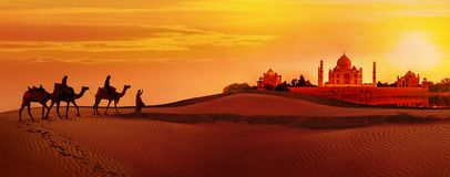 Τροχόσπιτο καμηλών που περνά από την έρημο Taj Mahal κατά τη διάρκεια του ηλιοβασιλέματος στοκ εικόνες
