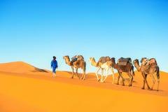 Τροχόσπιτο καμηλών που περνά από τους αμμόλοφους άμμου στην έρημο Σαχάρας Στοκ εικόνα με δικαίωμα ελεύθερης χρήσης