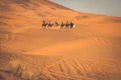 Τροχόσπιτο καμηλών που περνά από τους αμμόλοφους άμμου στην έρημο Σαχάρας, Στοκ Εικόνα