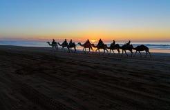 Τροχόσπιτο καμηλών στην παραλία στο ηλιοβασίλεμα Essaouira Στοκ εικόνες με δικαίωμα ελεύθερης χρήσης