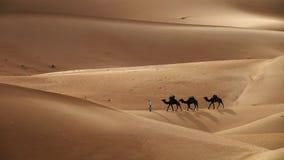 Τροχόσπιτο καμηλών στους αμμόλοφους άμμου ερήμων Στοκ Εικόνα