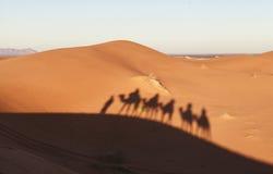 Τροχόσπιτο καμηλών στην έρημο Σαχάρας, Μαρόκο Στοκ φωτογραφία με δικαίωμα ελεύθερης χρήσης