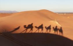 Τροχόσπιτο καμηλών στην έρημο Σαχάρας, Μαρόκο Στοκ εικόνα με δικαίωμα ελεύθερης χρήσης