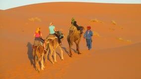 Τροχόσπιτο καμηλών τουριστών στους αμμόλοφους ερήμων άμμου της Αφρικής Στοκ φωτογραφίες με δικαίωμα ελεύθερης χρήσης