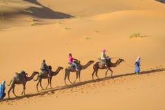 Τροχόσπιτο καμηλών τουριστών στους αμμόλοφους ερήμων άμμου της Αφρικής Στοκ εικόνα με δικαίωμα ελεύθερης χρήσης