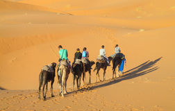 Τροχόσπιτο καμηλών τουριστών στους αμμόλοφους ερήμων άμμου της Αφρικής Στοκ Εικόνες