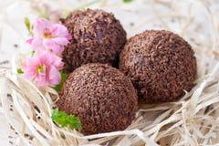 τρούφα σοκολάτας Στοκ εικόνες με δικαίωμα ελεύθερης χρήσης