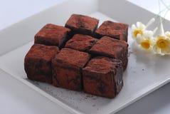 τρούφα σοκολάτας Στοκ Εικόνα