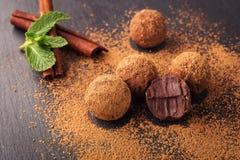 Τρούφα σοκολάτας, καραμέλες σοκολάτας τρουφών με τη σκόνη κακάου Σπιτικές φρέσκες ενεργειακές σφαίρες με τη σοκολάτα Γαστρονομικέ Στοκ Εικόνες