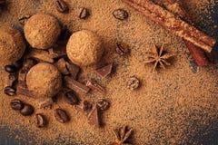 Τρούφα σοκολάτας, καραμέλες σοκολάτας τρουφών με τη σκόνη κακάου Ho Στοκ εικόνα με δικαίωμα ελεύθερης χρήσης