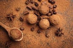 Τρούφα σοκολάτας, καραμέλες σοκολάτας τρουφών με τη σκόνη κακάου Ho Στοκ Φωτογραφία