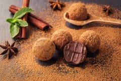 Τρούφα σοκολάτας, καραμέλες σοκολάτας τρουφών με τη σκόνη κακάου Ho Στοκ Εικόνα