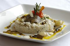 τρούφα risotto στοκ εικόνα με δικαίωμα ελεύθερης χρήσης
