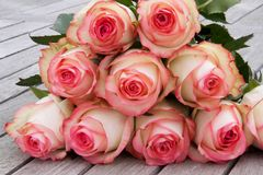 Τρυφερά τριαντάφυλλα στο παλαιό γκρίζο ξύλο Στοκ εικόνα με δικαίωμα ελεύθερης χρήσης