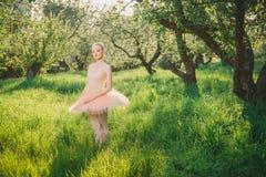 Τρυφερή και ρομαντική γυναίκα χορευτών στο πράσινο τοπίο στο ηλιοβασίλεμα Στοκ φωτογραφίες με δικαίωμα ελεύθερης χρήσης