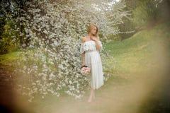 Τρυφερό πλήρες πορτρέτο OD ύψους μια ξανθή γυναίκα στο άσπρο φόρεμα με μια ανθοδέσμη που στέκεται κοντά στο ανθίζοντας δέντρο τη  στοκ εικόνες με δικαίωμα ελεύθερης χρήσης