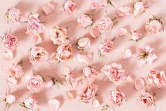 Τρυφερό σχέδιο των ξηρών ρόδινων τριαντάφυλλων στο κατασκευασμένο υπόβαθρο Στοκ Εικόνες