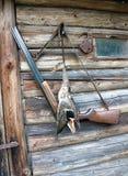 Τρόπαιο κυνηγιού αγριοχήνων και ένα τουφέκι κυνηγιού Στοκ φωτογραφίες με δικαίωμα ελεύθερης χρήσης
