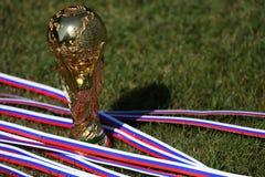 Τρόπαιο Παγκόσμιου Κυπέλλου Στοκ εικόνα με δικαίωμα ελεύθερης χρήσης