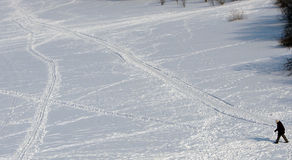 τρόποι χιονιού στοκ εικόνα