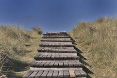 Τρόπος αμμόλοφων Στοκ εικόνες με δικαίωμα ελεύθερης χρήσης