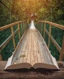 Τρόπος από τη γέφυρα σε ένα δάσος στις σελίδες του βιβλίου στοκ εικόνες